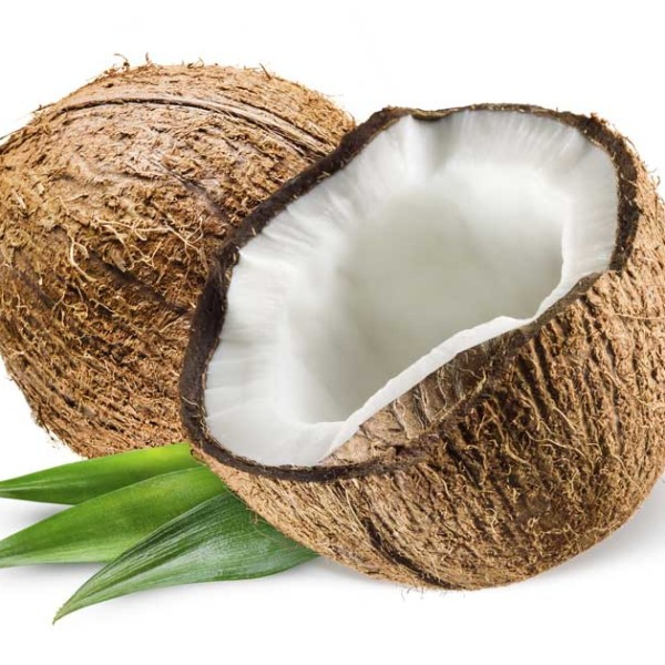 coconut-fb